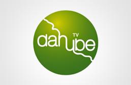 ТВ Данубе лого